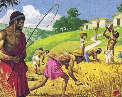рабы-греков